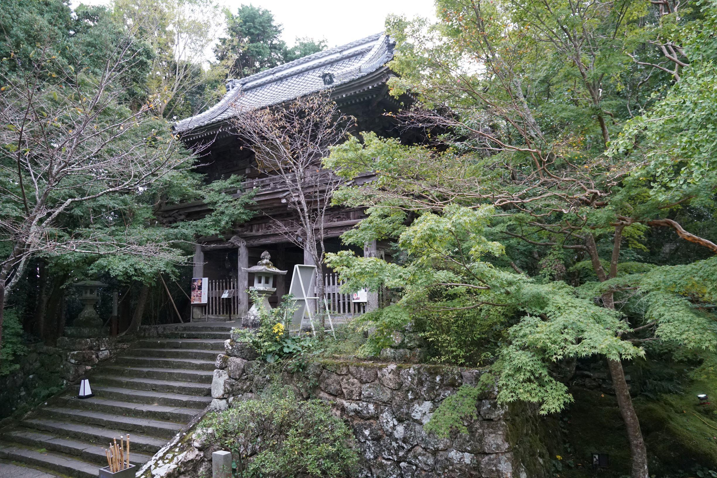 綠蔭盎然的竹林寺