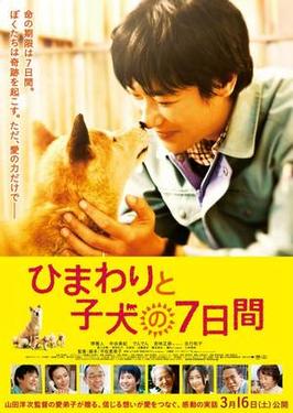 向日葵與幼犬的七天的海報 引自wiki