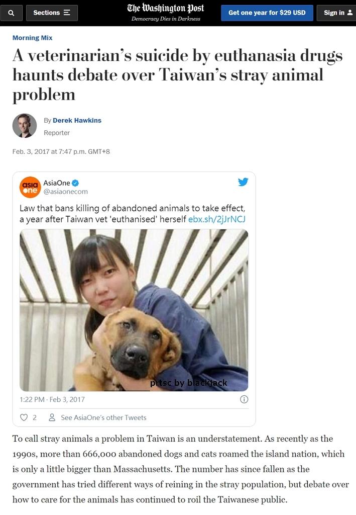 國際媒體紛紛報導獸醫簡稚澄因為臺灣的流浪狗安樂死政策輕生