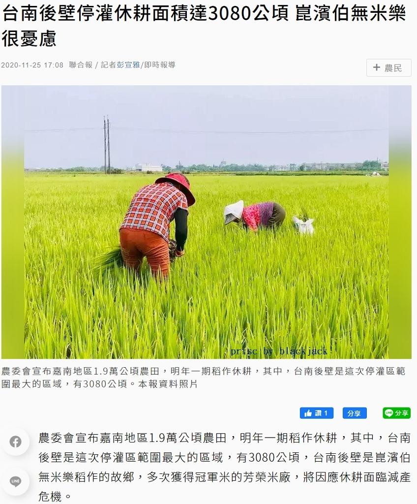 聯合報報導台南後壁停灌休耕面積達3080公頃 崑濱伯無米樂很憂慮,但實際上崑濱伯因生病早已未下田耕作